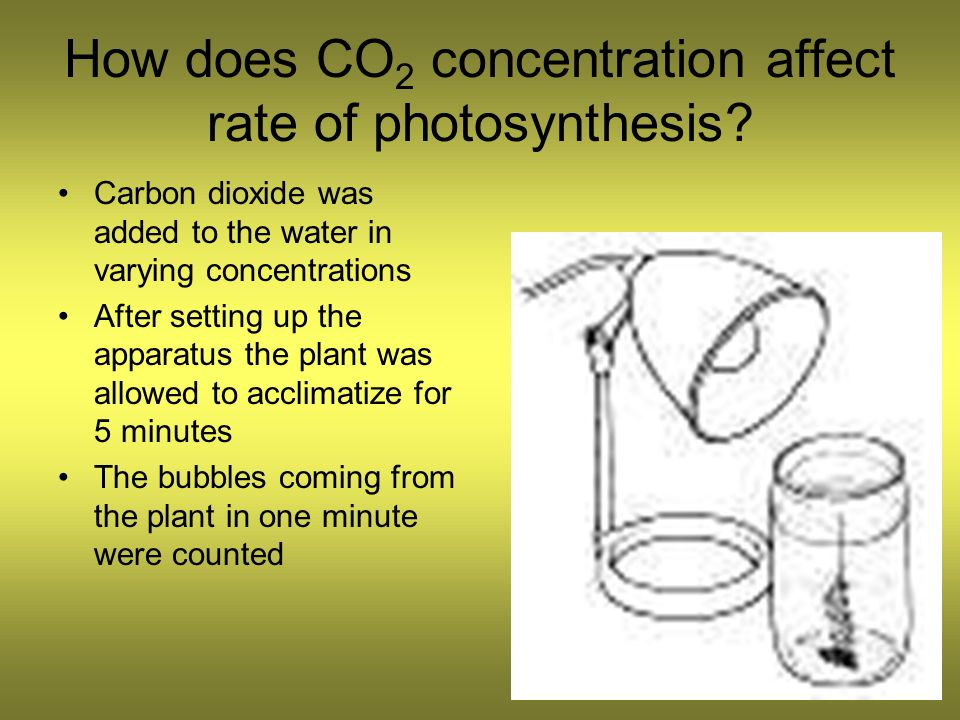 how does the concentration of the A urine concentration test measures the ability of the kidneys to conserve or excrete water how the test is performed for this test, the specific gravity of urine , urine electrolytes , and/or urine osmolality are measured before and after one or more of the following:.