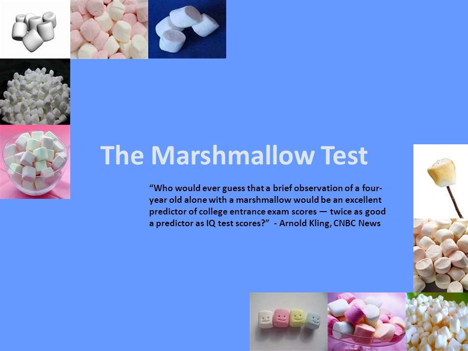 marshmallow test I stopped by the first grade teachers team meeting last week and asked them which social emotional skills their students are struggling the most with.