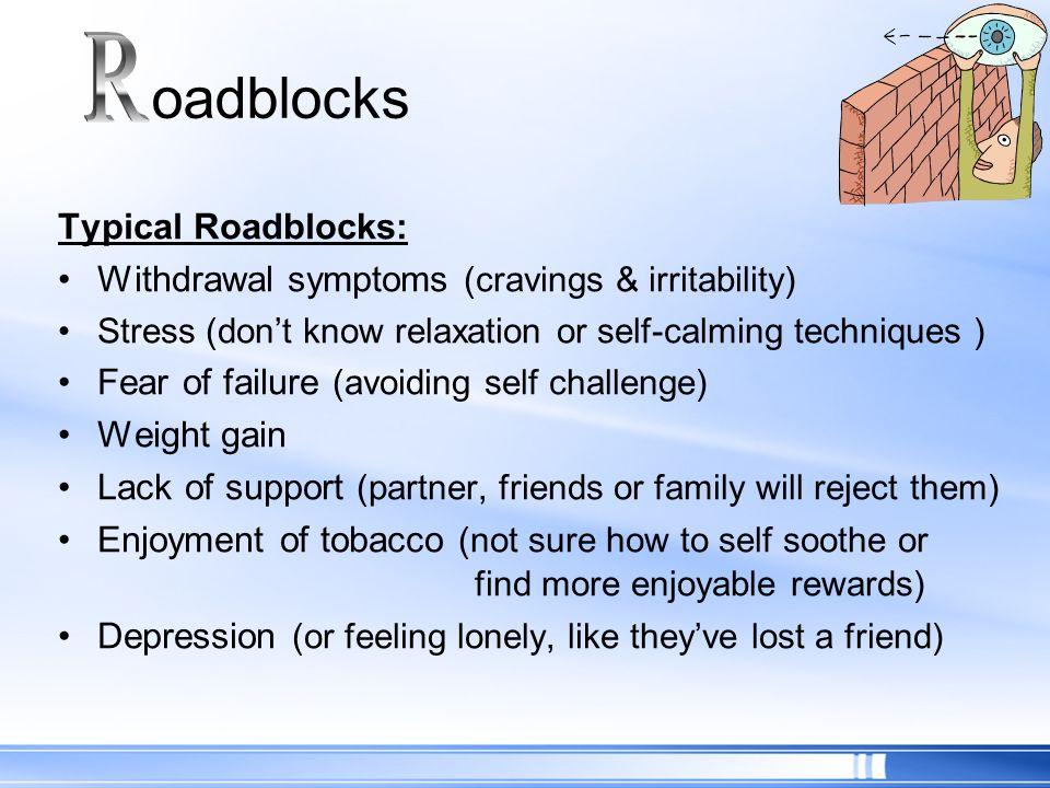 R oadblocks Typical Roadblocks: