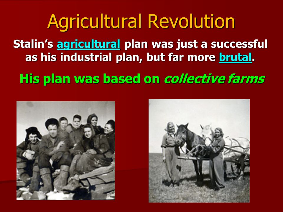 how successful was stalin s collectivisation policies In 1928, stalin faced three problems in the agricultural sector of the soviet  economy  in order to resolve these problems stalin introduced the policy of  collectivization of farms  the kulaks were successful farmers.