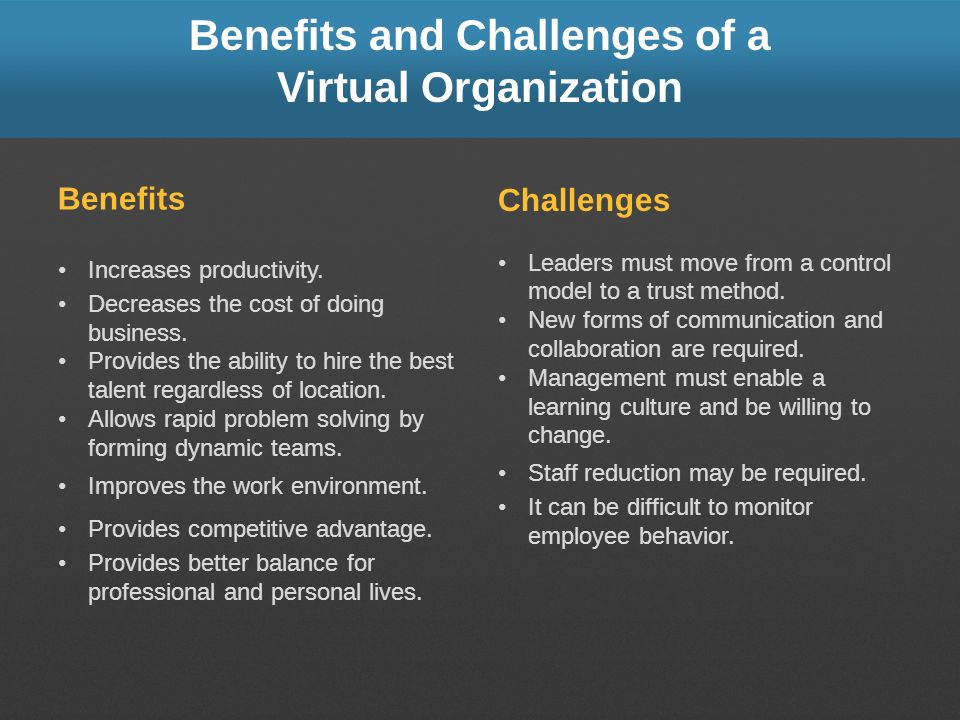 Benefits and Challenges of a Virtual Organization