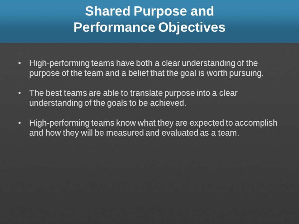 Shared Purpose and Performance Objectives