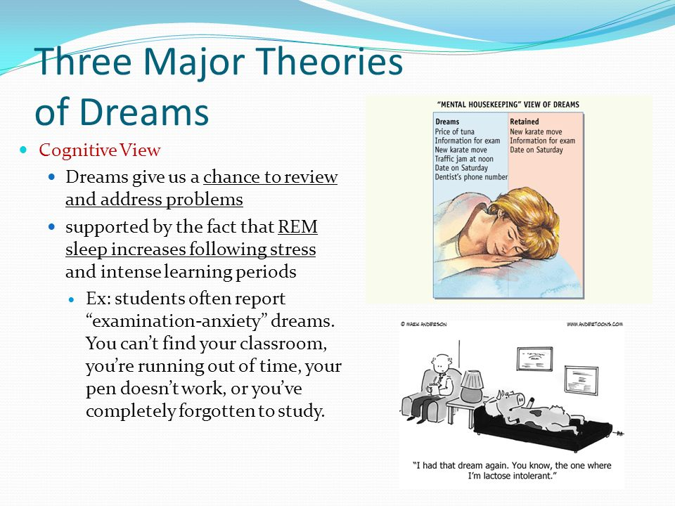 the three important functions of dreams Apa reference tartakovsky, m (2016) how to analyze your dreams (and why it's important) psych central retrieved on june 14, 2018, from  .