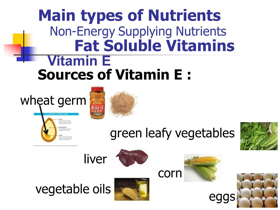 a look at the six main types of nutrition