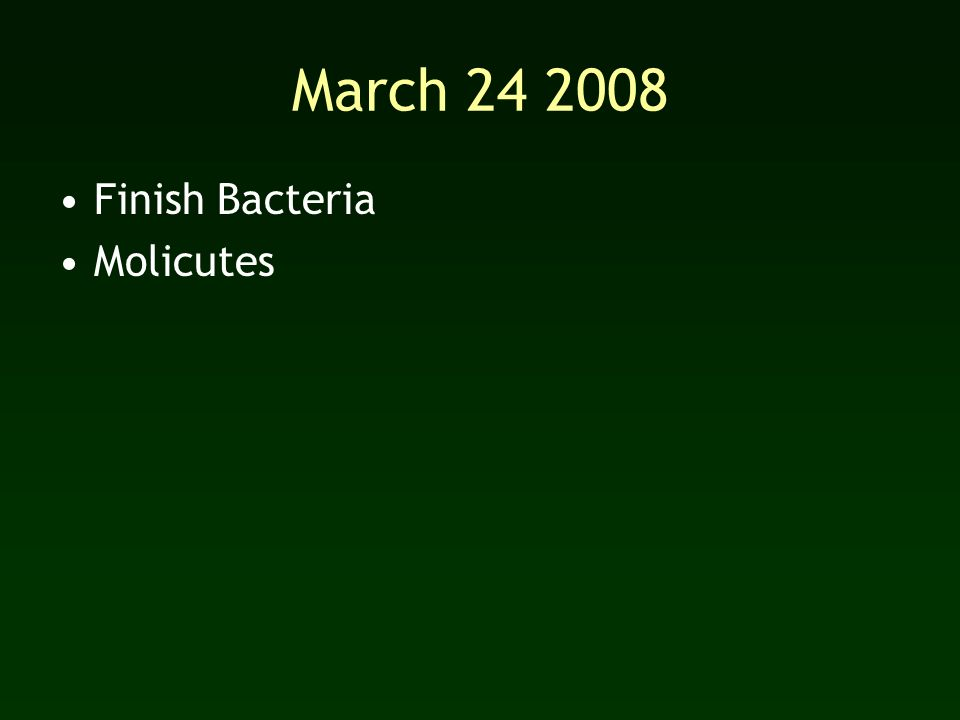 March Finish Bacteria Molicutes