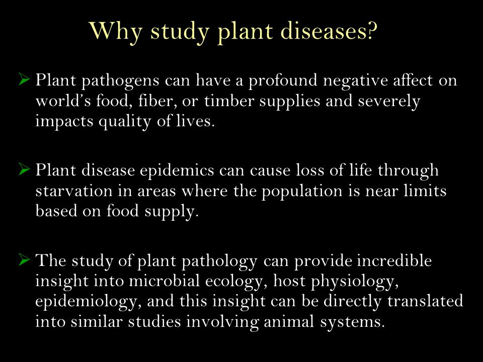 Why study plant diseases