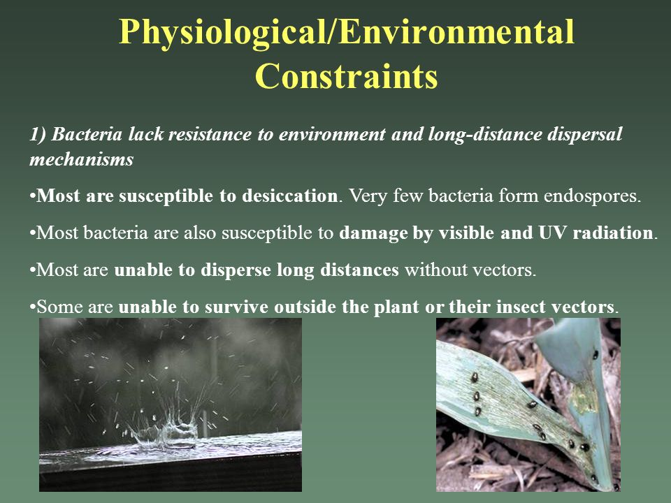 Physiological/Environmental Constraints