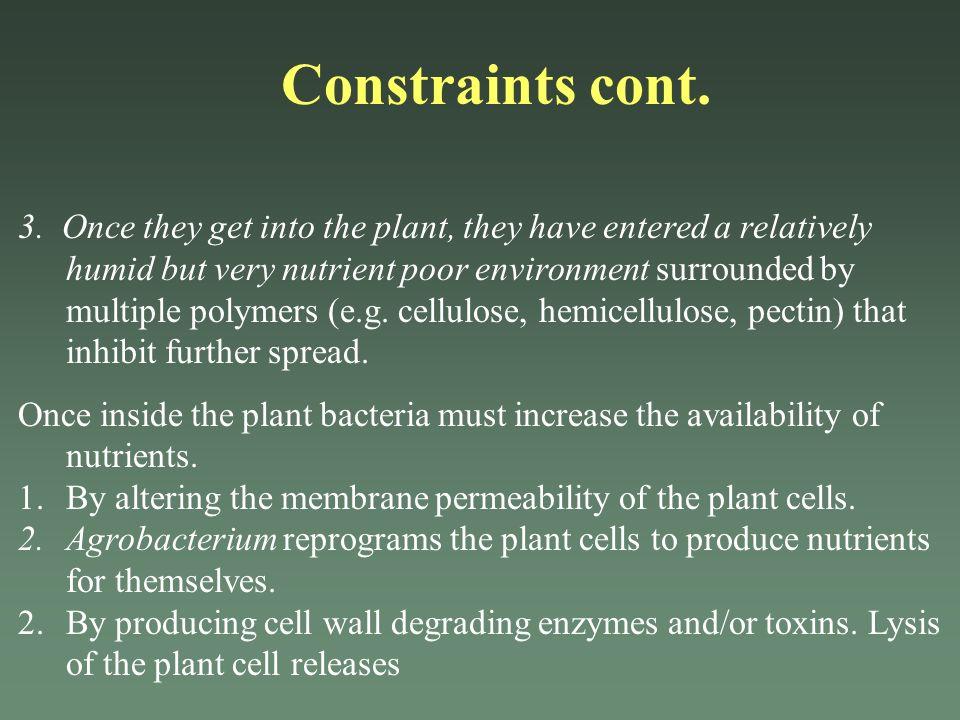 Constraints cont.