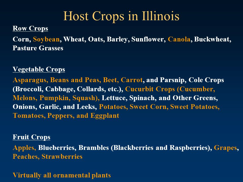 Host Crops in Illinois Row Crops