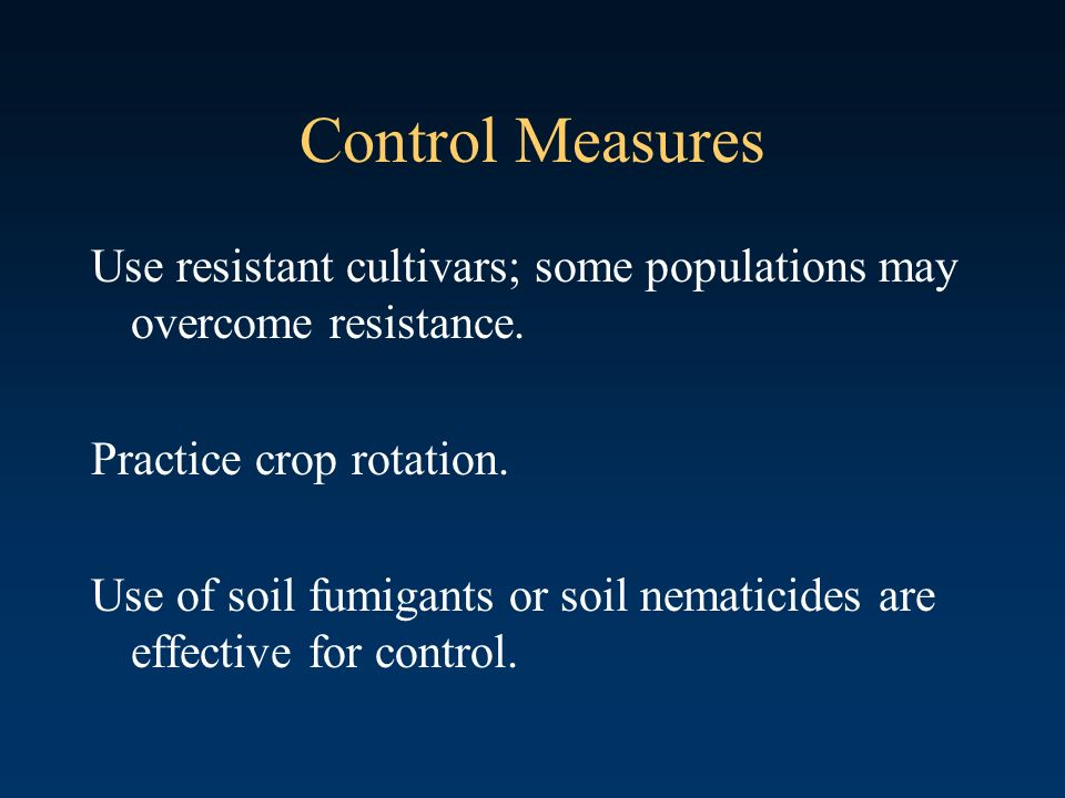 Control Measures Use resistant cultivars; some populations may overcome resistance. Practice crop rotation.