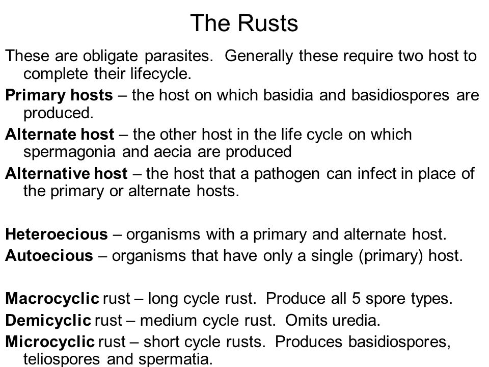 The Rusts These are obligate parasites. Generally these require two host to complete their lifecycle.