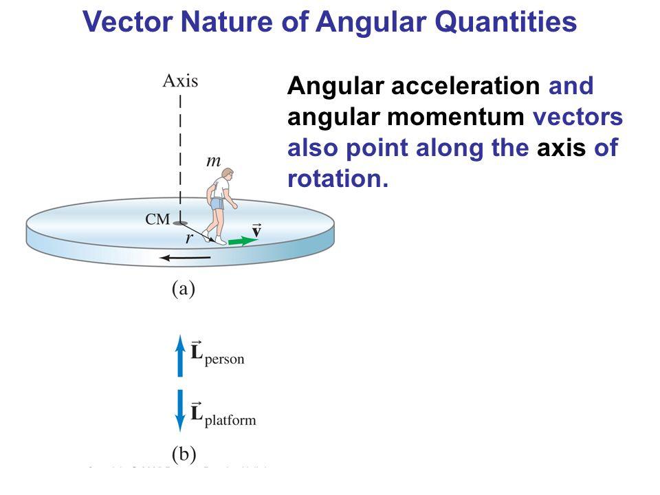 Vector Nature of Angular Quantities
