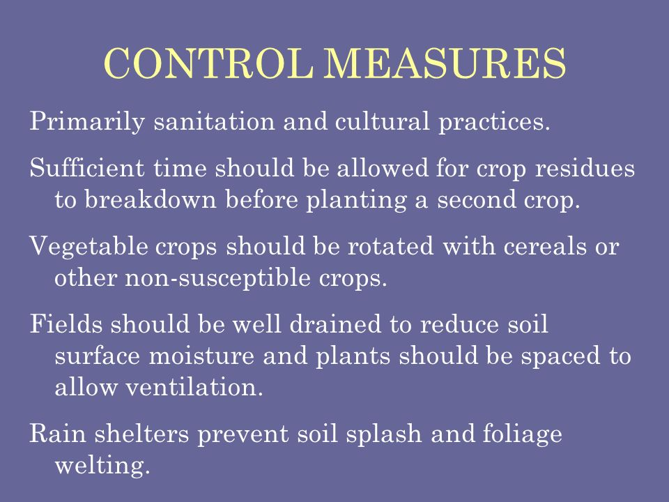 CONTROL MEASURES Primarily sanitation and cultural practices.