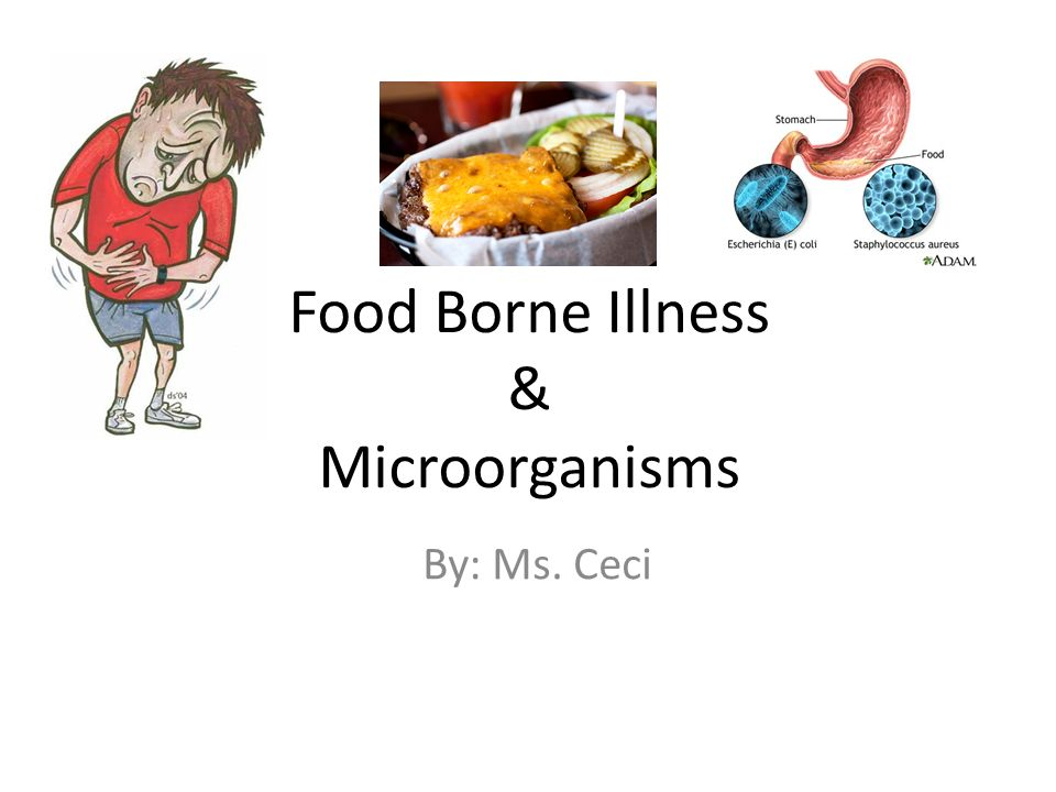 Which Bacteria Can Be Responsible For A Food Borne Infection