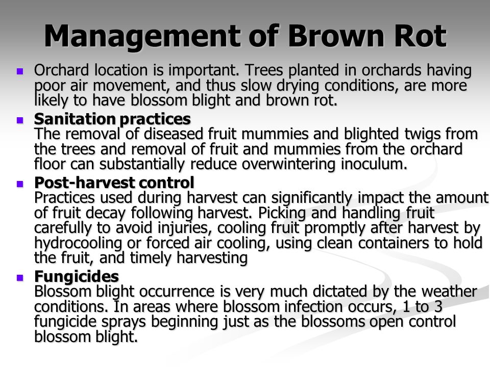 Management of Brown Rot