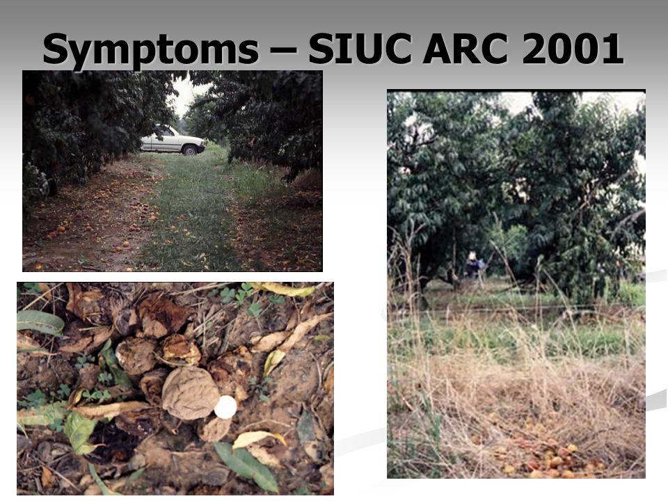Symptoms – SIUC ARC 2001