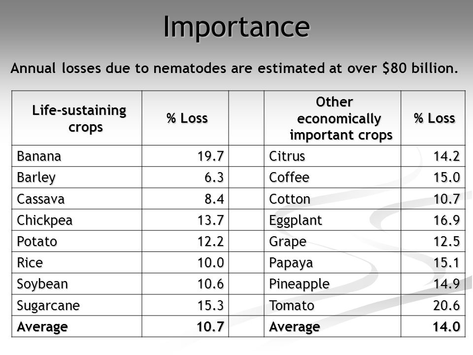 Importance Annual losses due to nematodes are estimated at over $80 billion. Life-sustaining crops.