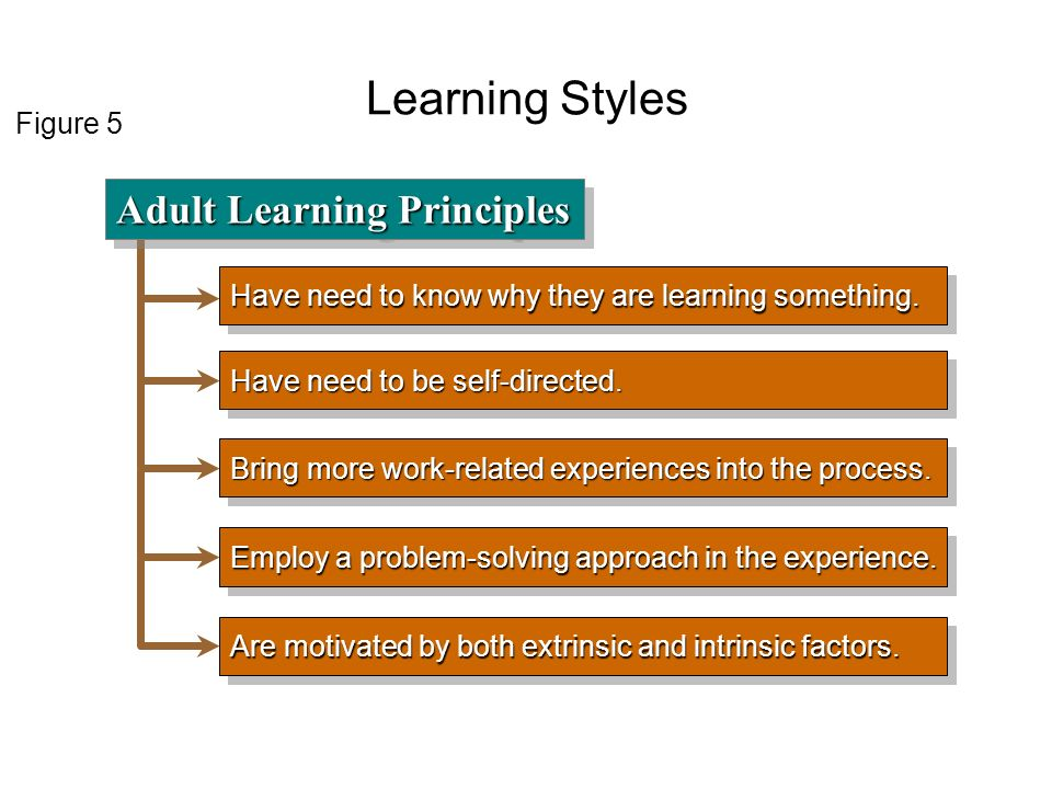 adult learning and learning styles Theories of adult learning – an overview john t beaver, mba.