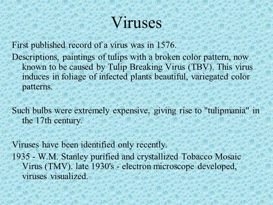 Viruses First published record of a virus was in 1576.