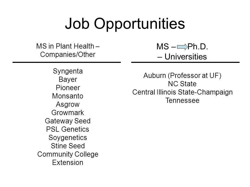 Job Opportunities MS – Ph.D. – Universities MS in Plant Health –