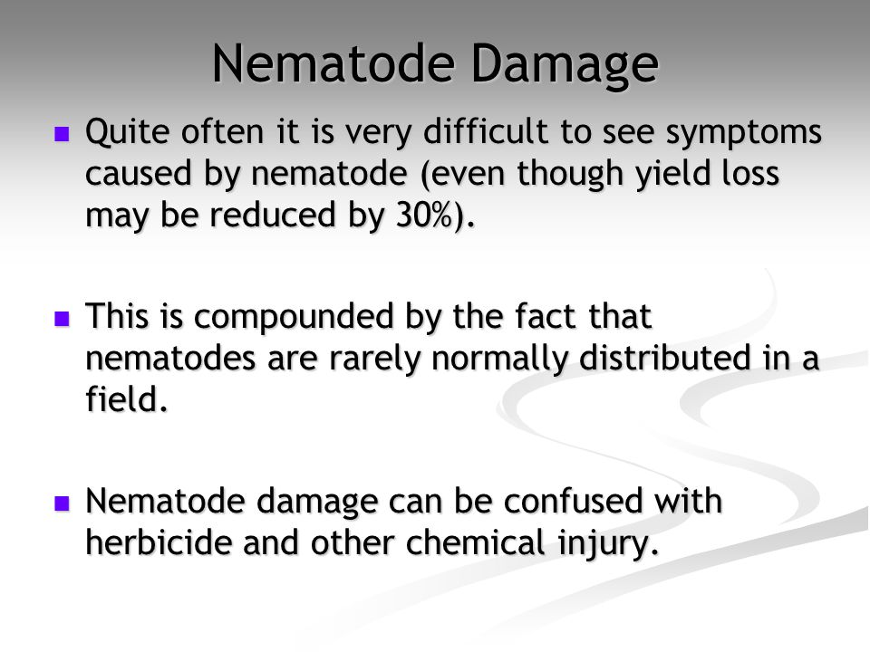 Nematode Damage Quite often it is very difficult to see symptoms caused by nematode (even though yield loss may be reduced by 30%).