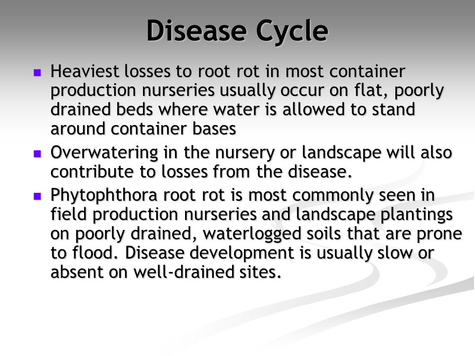 Disease Cycle
