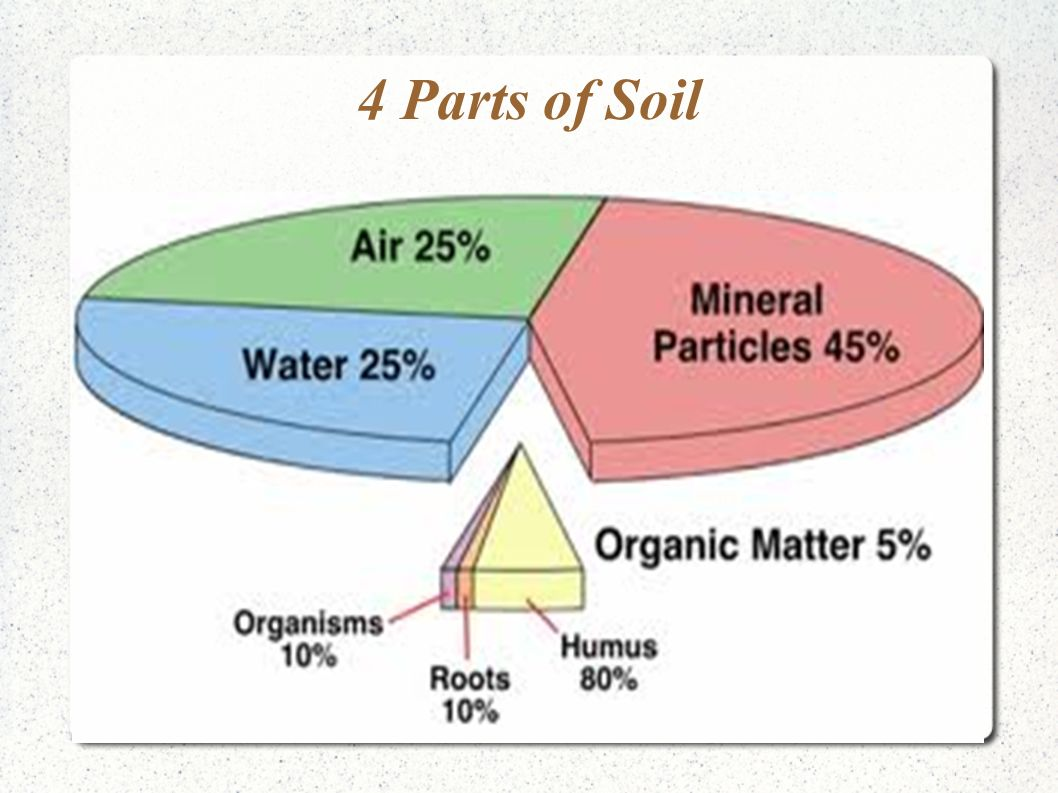 Chapter 5 2 soils ppt video online download for 4 parts of soil