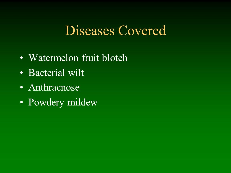 Diseases Covered Watermelon fruit blotch Bacterial wilt Anthracnose