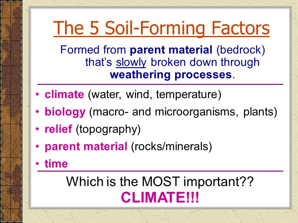 Land then is not merely soil it is a fountain of for Soil forming factors