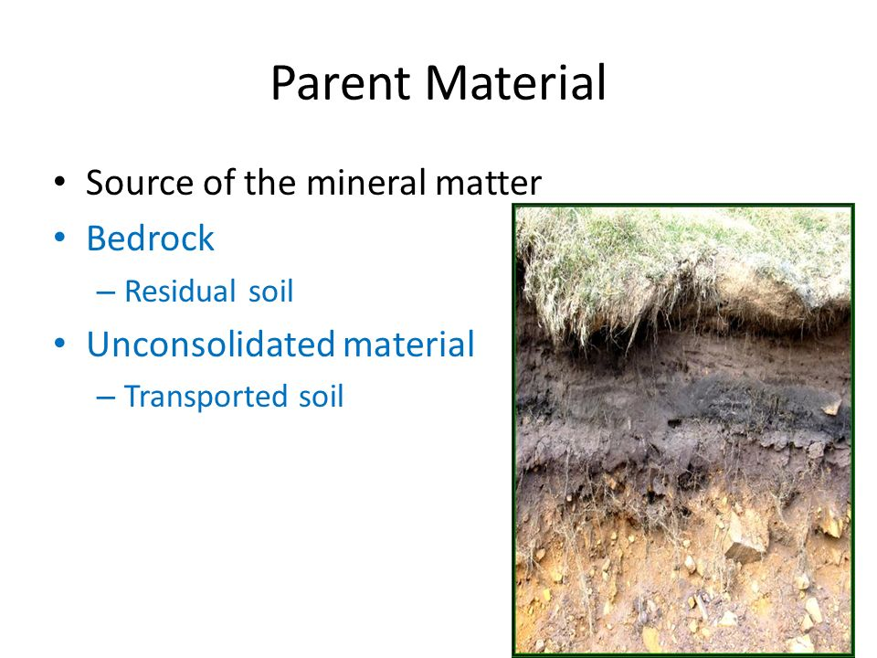 Soils ppt download for Importance of soil minerals