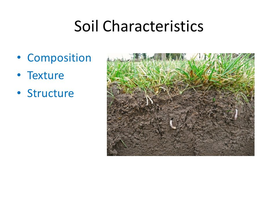 Soils ppt download for What are soil characteristics