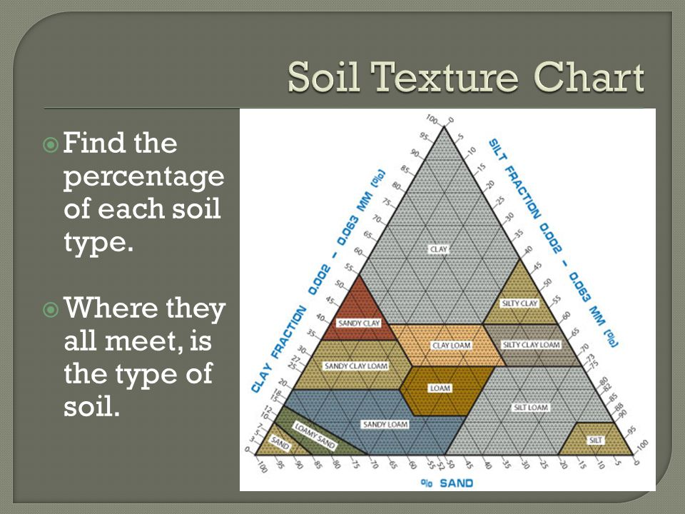Soil sand silt clay ppt download for Where to find soil