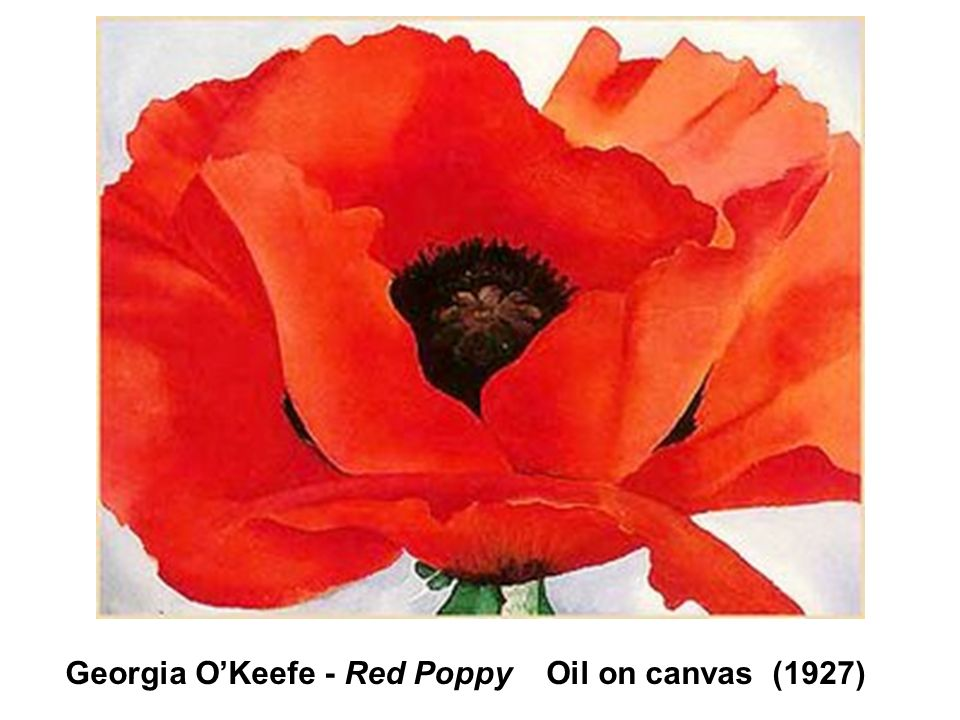 Georgia O'Keefe - Red Poppy Oil on canvas (1927)