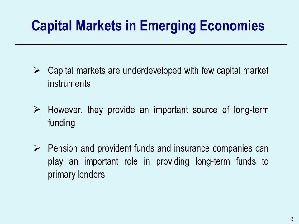 Capital Markets in Emerging Economies