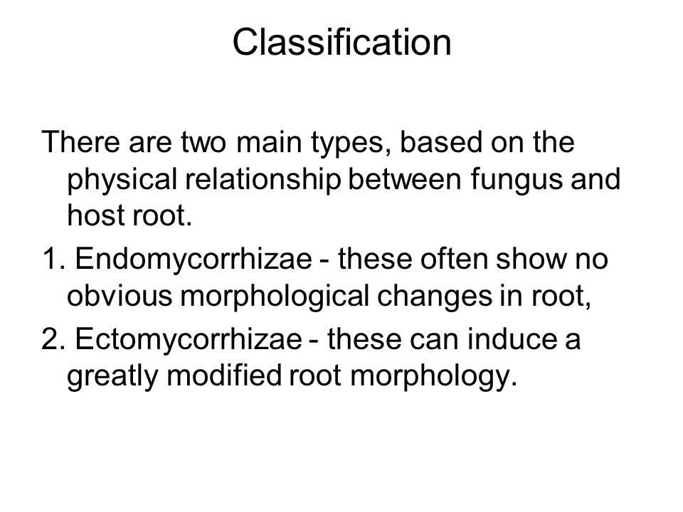 Classification There are two main types, based on the physical relationship between fungus and host root.