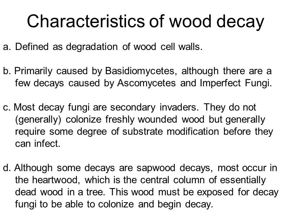 Characteristics of wood decay