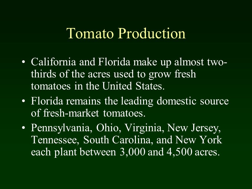 Tomato Production California and Florida make up almost two-thirds of the acres used to grow fresh tomatoes in the United States.