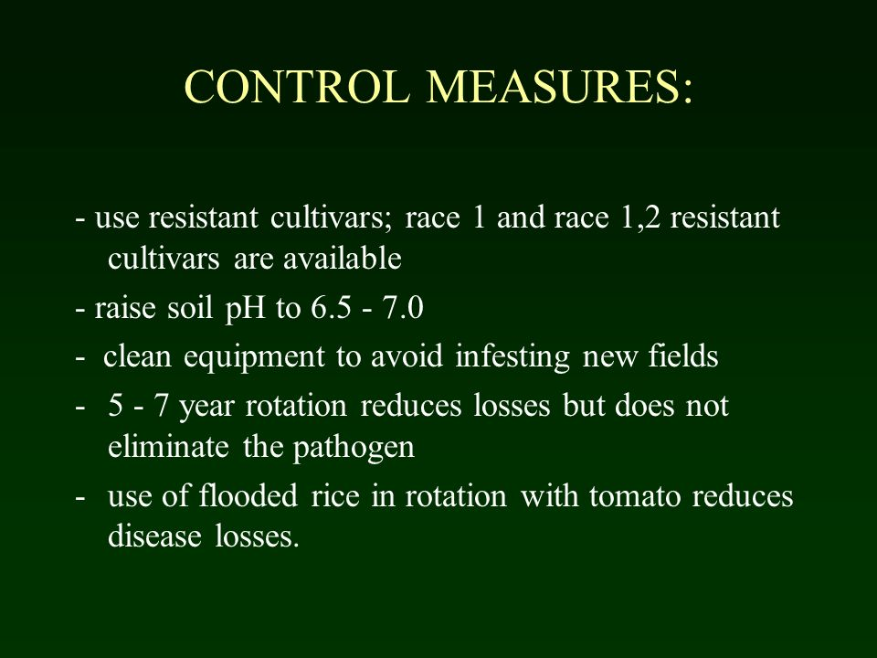 CONTROL MEASURES: - use resistant cultivars; race 1 and race 1,2 resistant cultivars are available.