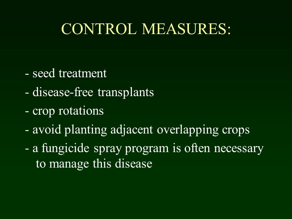 CONTROL MEASURES: - seed treatment - disease-free transplants