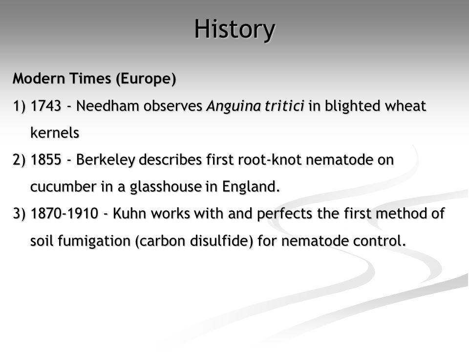 History Modern Times (Europe)