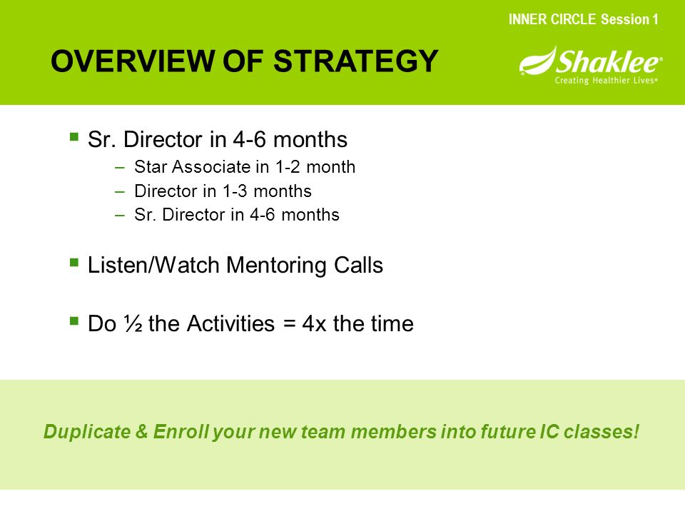 OVERVIEW OF STRATEGY Sr. Director in 4-6 months
