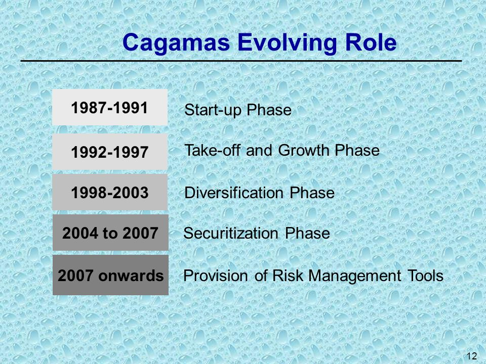Cagamas Evolving Role 1987-1991 1992-1997 1998-2003 2004 to 2007