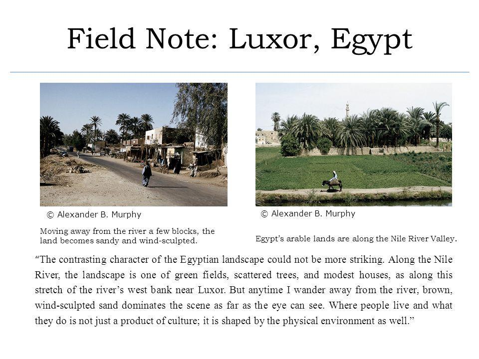 Field Note: Luxor, Egypt