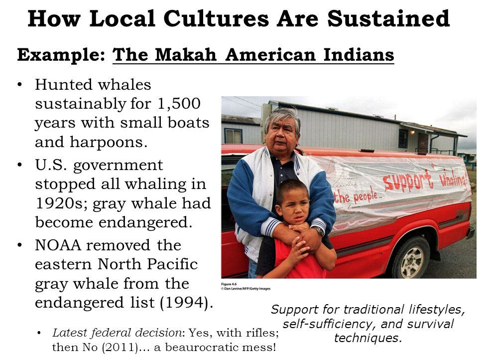 Example: The Makah American Indians