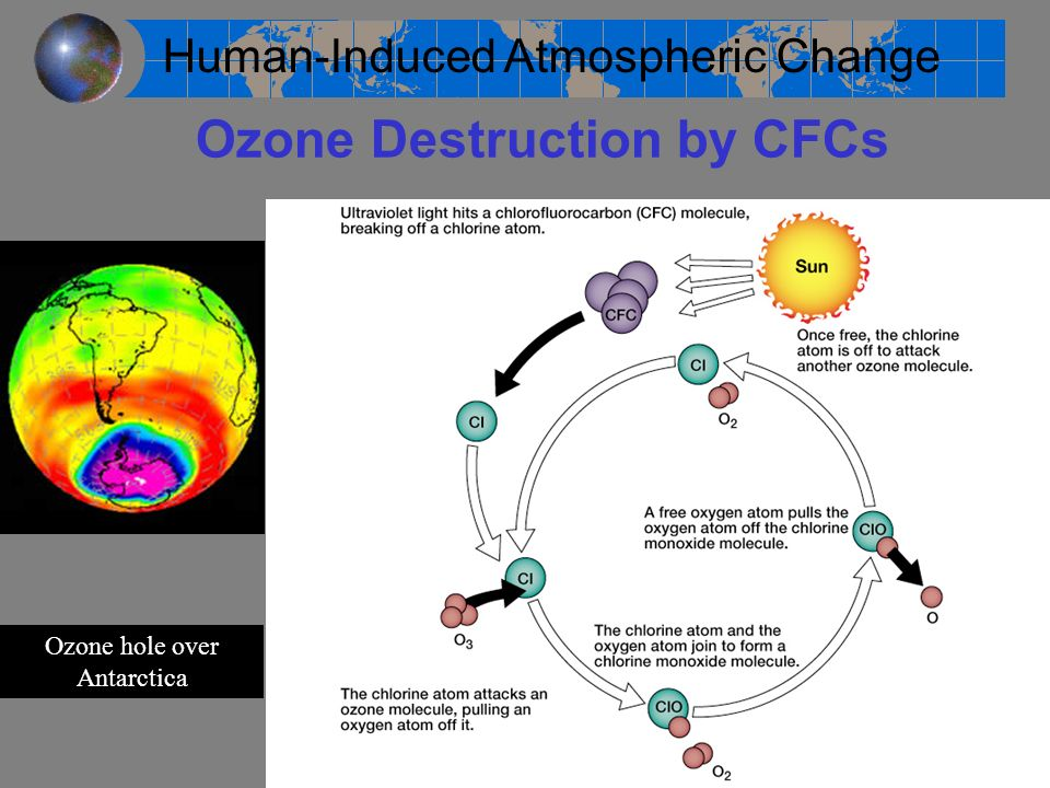 Ozone Destruction by CFCs
