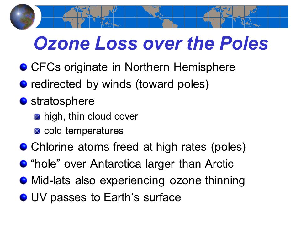Ozone Loss over the Poles
