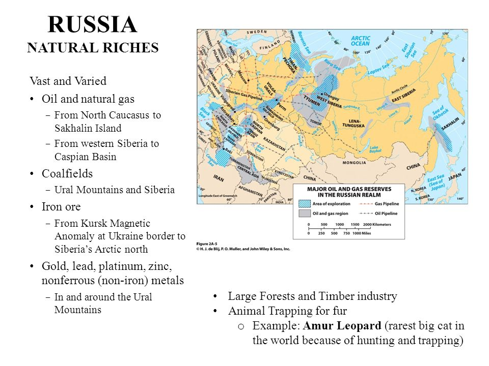 RUSSIA NATURAL RICHES Vast and Varied Oil and natural gas Coalfields