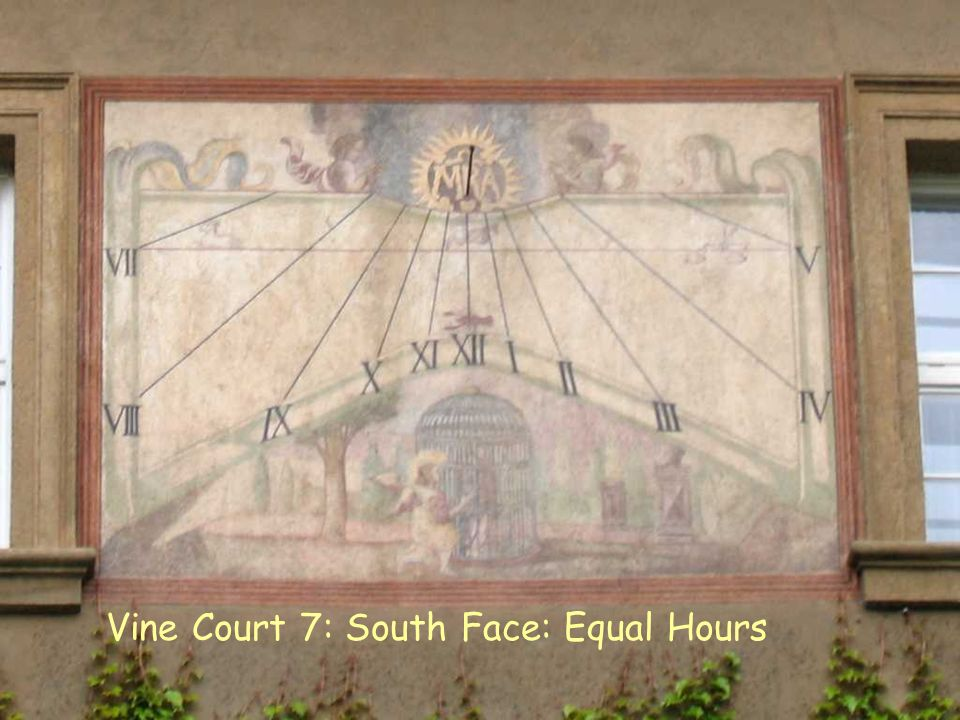 VC 7 S Equal Vine Court 7: South Face: Equal Hours