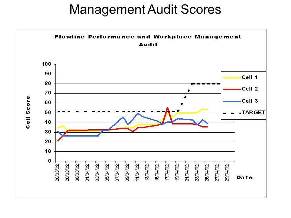 Management Audit Scores