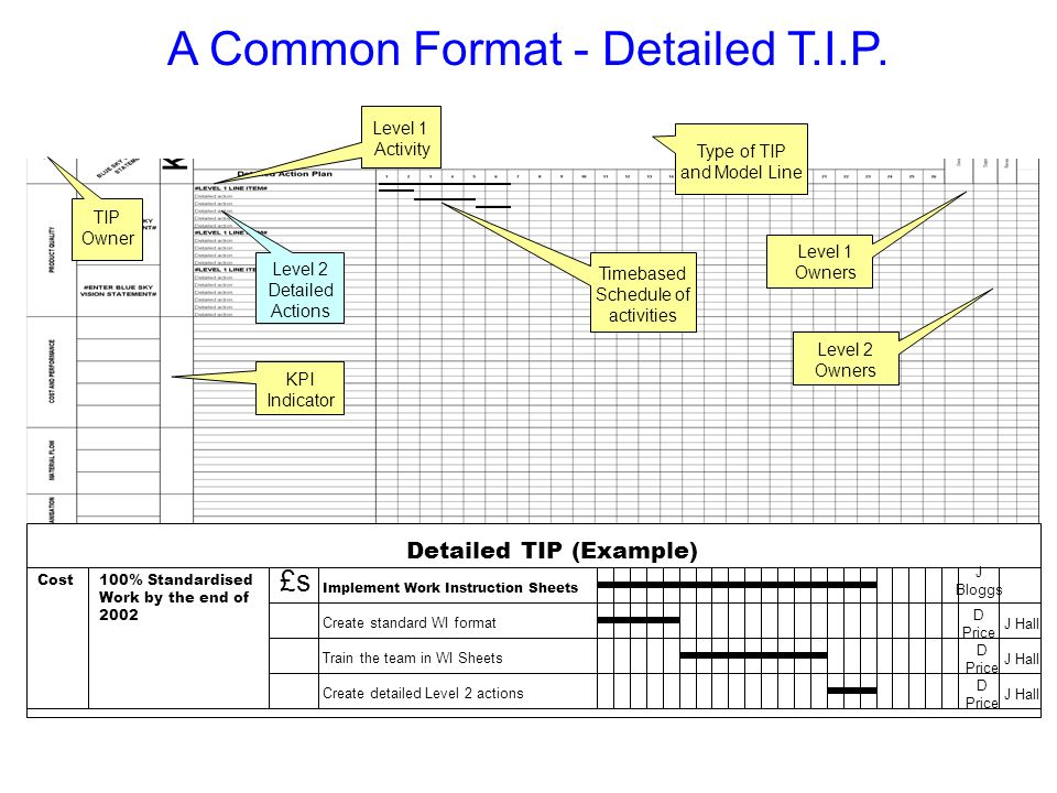 A Common Format - Detailed T.I.P.
